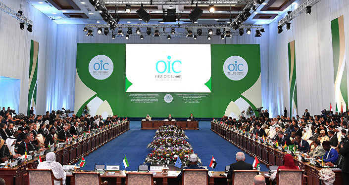 Conference of OIC Labor Ministers 2013